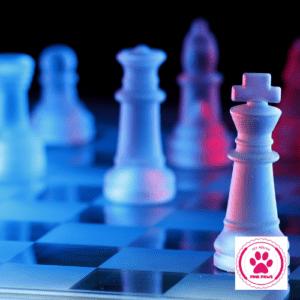 War- en boardgames