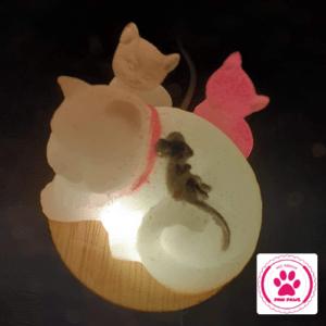 Kattenlampjes